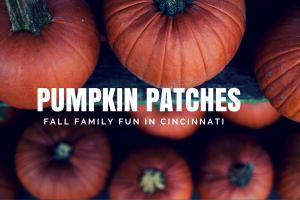 Cincinnati Pumpkin Patches